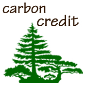 Carbon Sequestration Credit